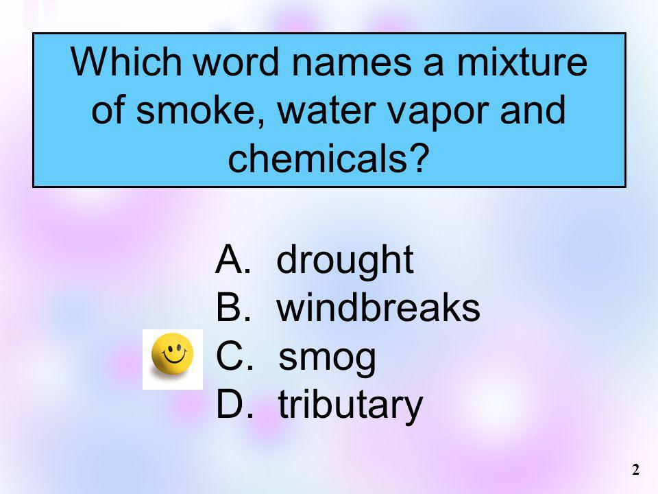 Which word names a mixture of smoke, water vapor and chemicals