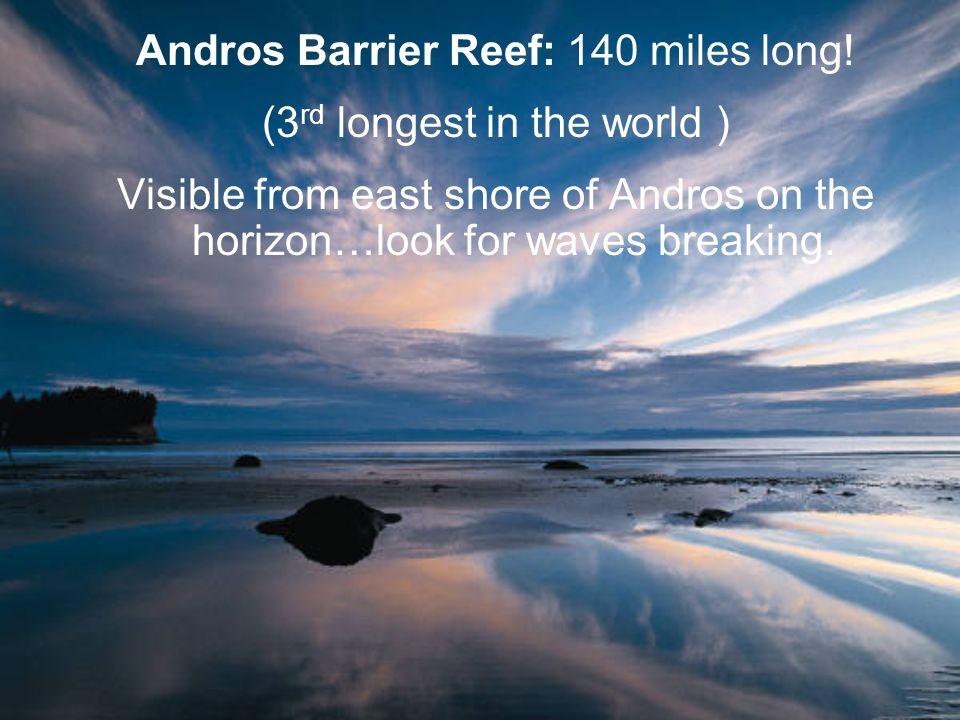 Andros Barrier Reef: 140 miles long! (3rd longest in the world )
