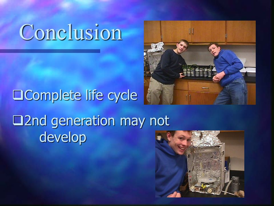 Conclusion Complete life cycle 2nd generation may not develop