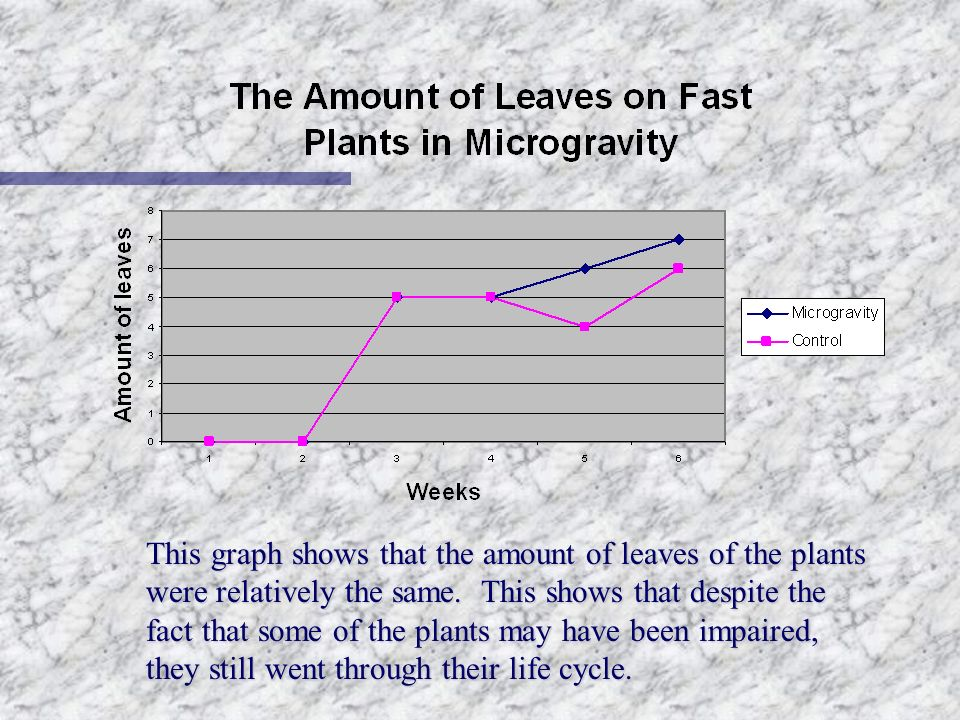 This graph shows that the amount of leaves of the plants