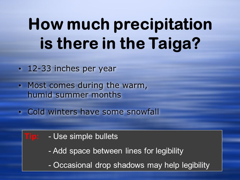 How much precipitation is there in the Taiga