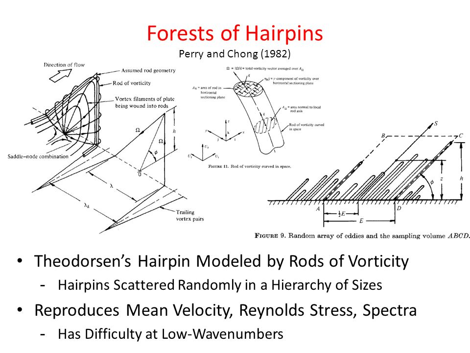 Forests of Hairpins Perry and Chong (1982)