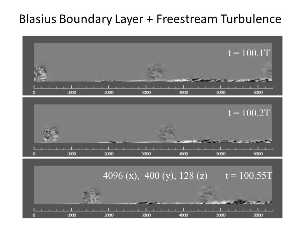 Blasius Boundary Layer + Freestream Turbulence