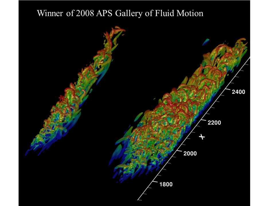 Winner of 2008 APS Gallery of Fluid Motion