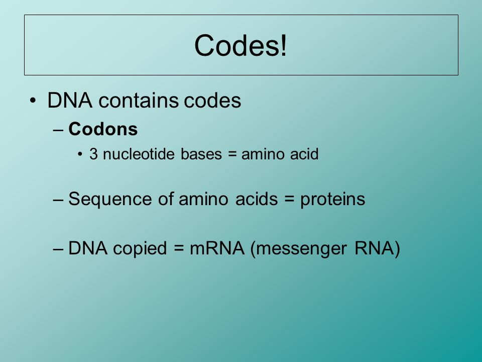 Codes! DNA contains codes Codons Sequence of amino acids = proteins