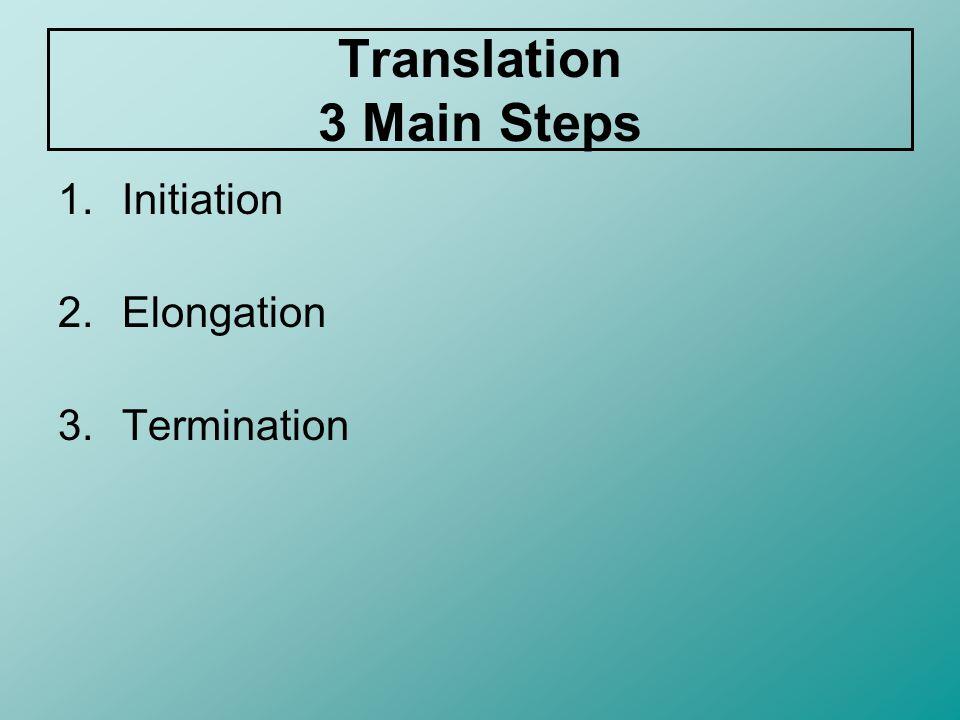 Translation 3 Main Steps
