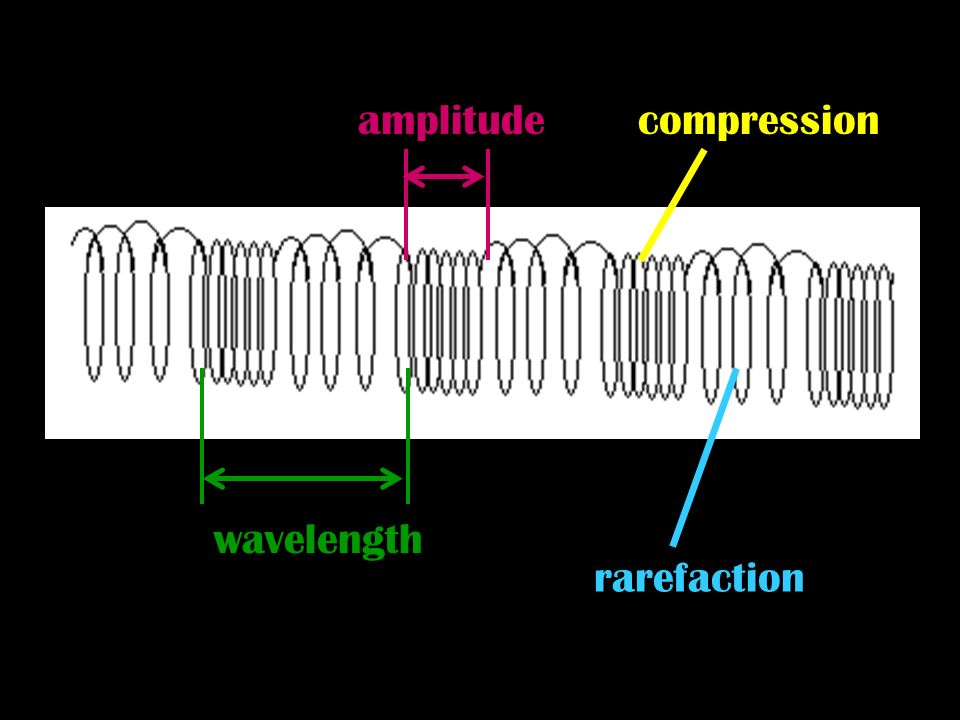 amplitude compression wavelength rarefaction