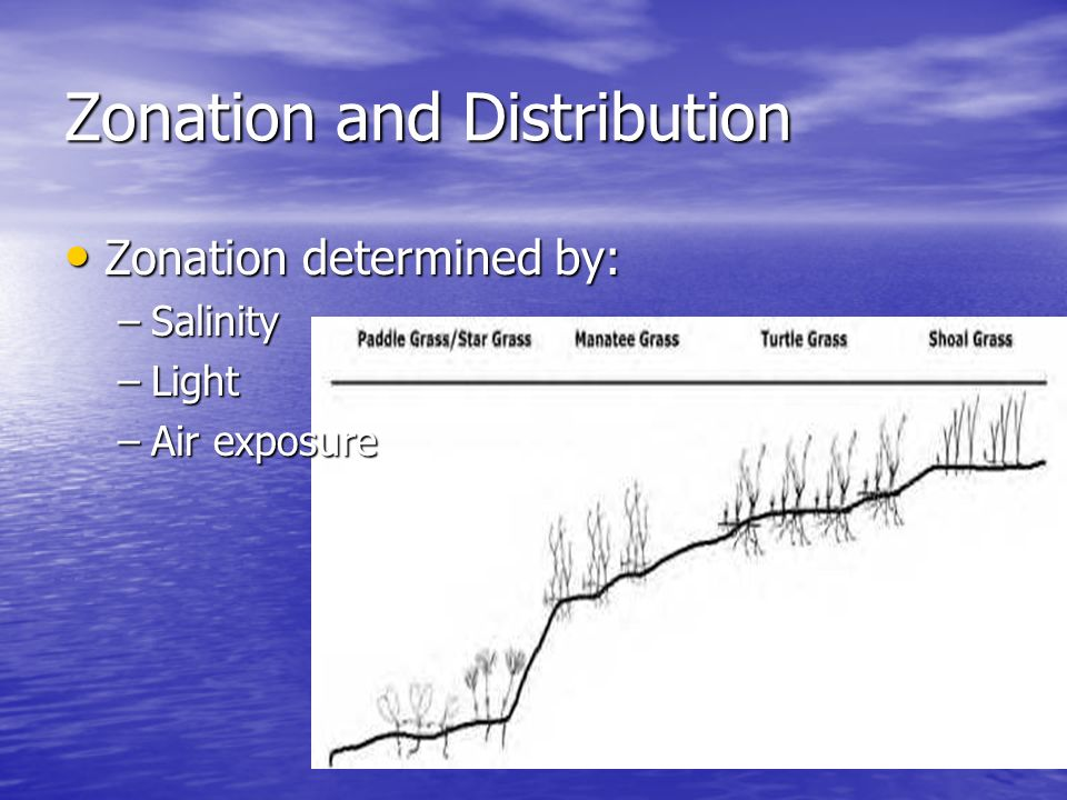Zonation and Distribution