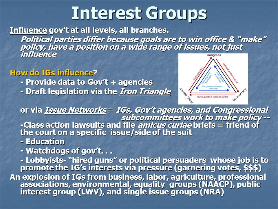 Interest Groups Influence gov't at all levels, all branches.