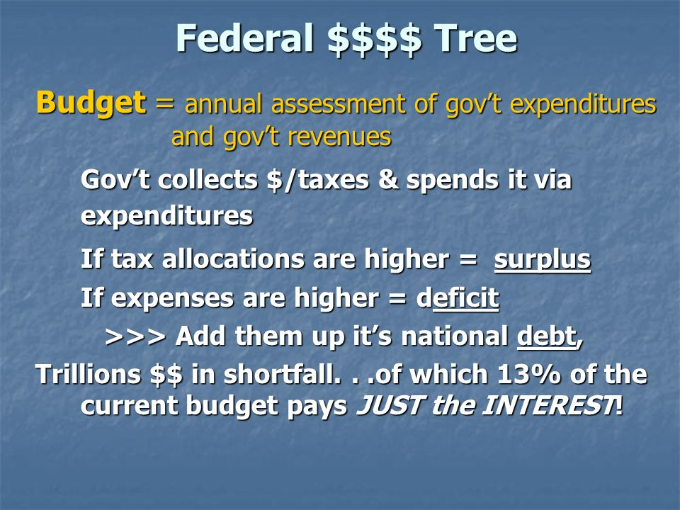 Federal $$$$ Tree Budget = annual assessment of gov't expenditures and gov't revenues. Gov't collects $/taxes & spends it via expenditures.