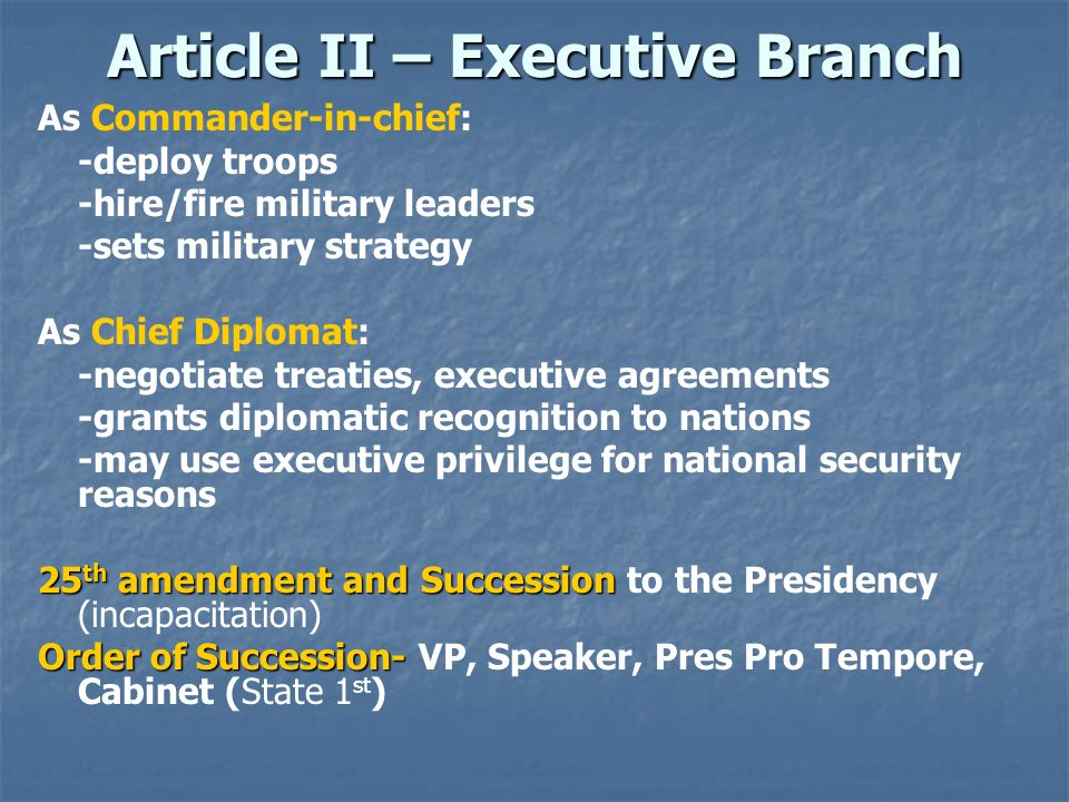 Article II – Executive Branch