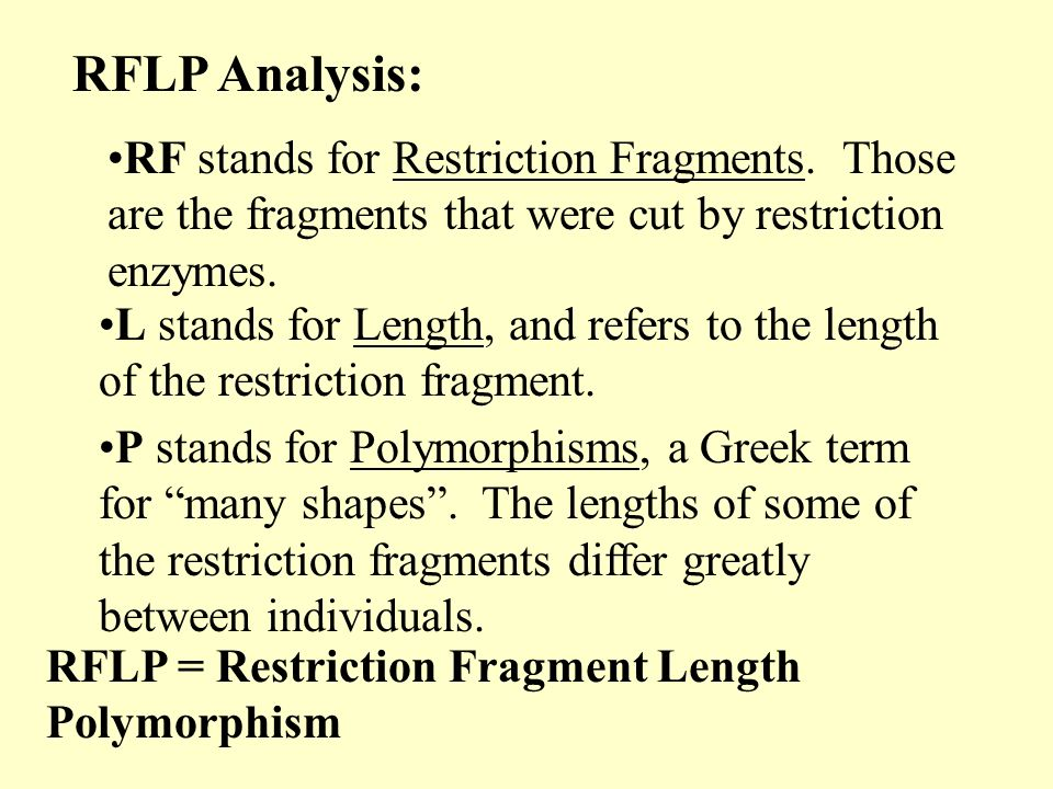 RFLP Analysis: RF stands for Restriction Fragments. Those are the fragments that were cut by restriction enzymes.
