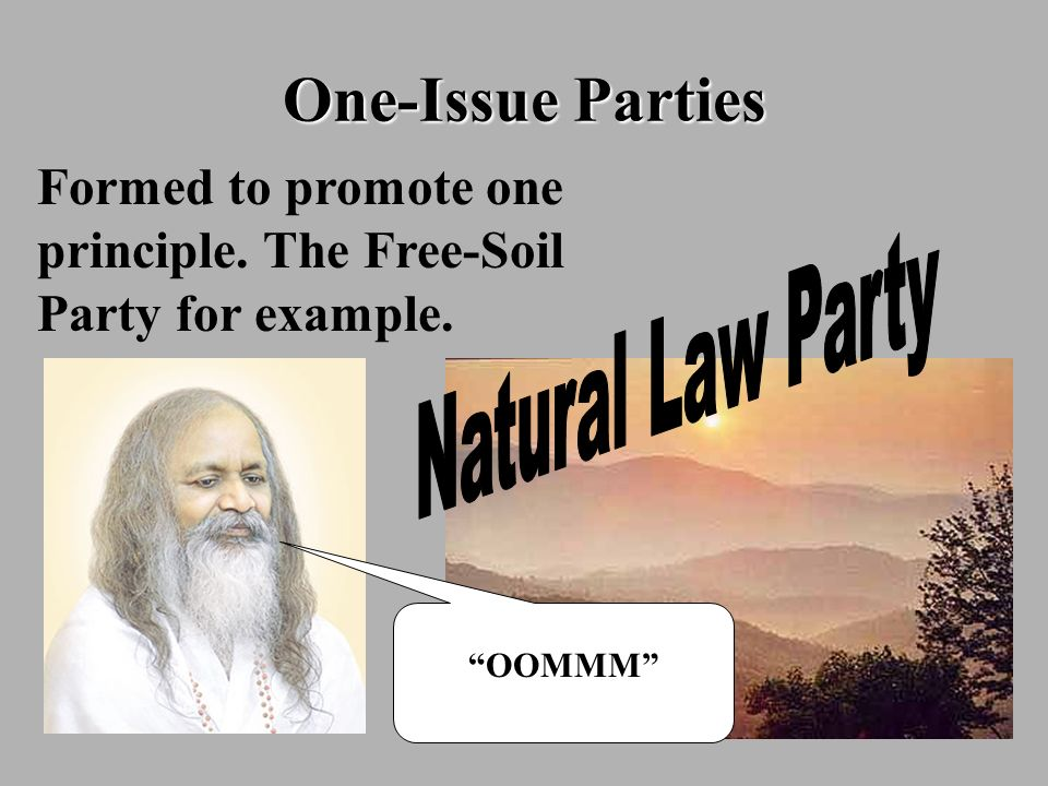 One-Issue PartiesFormed to promote one principle. The Free-Soil Party for example. Natural Law Party.