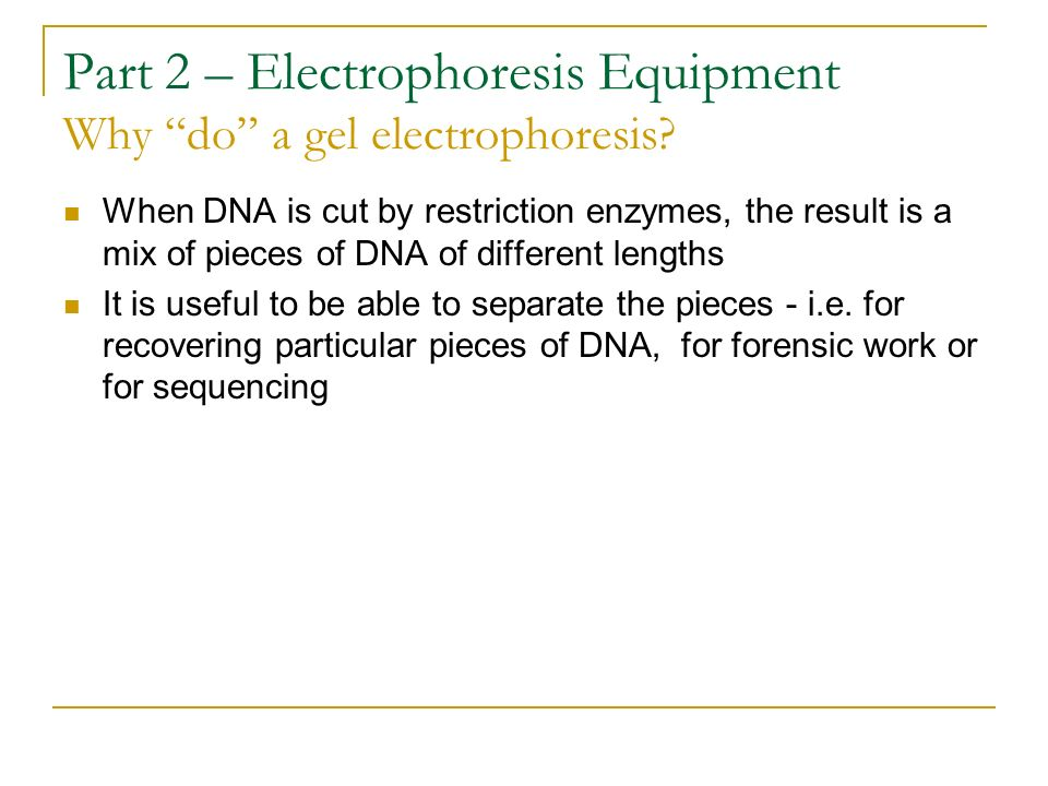 Part 2 – Electrophoresis Equipment Why do a gel electrophoresis