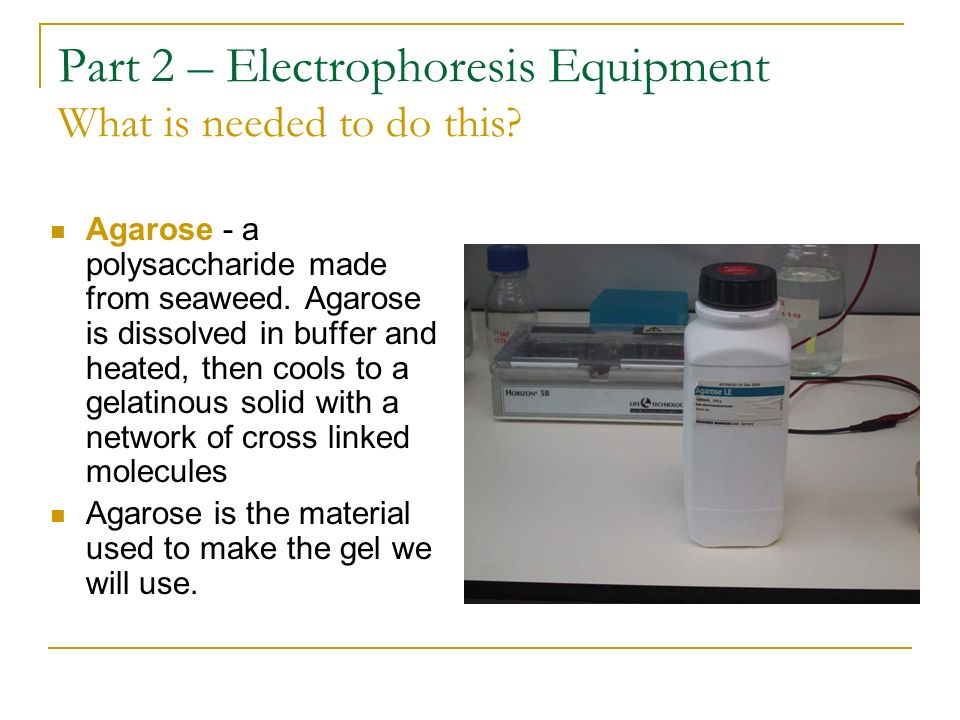 Part 2 – Electrophoresis Equipment What is needed to do this