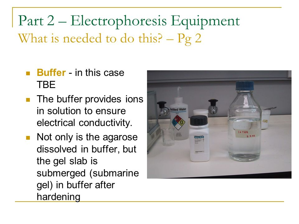 Part 2 – Electrophoresis Equipment What is needed to do this – Pg 2
