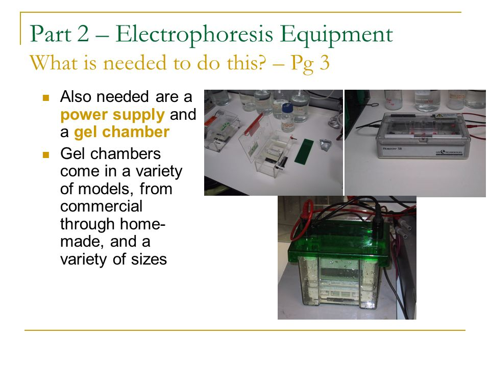 Part 2 – Electrophoresis Equipment What is needed to do this – Pg 3