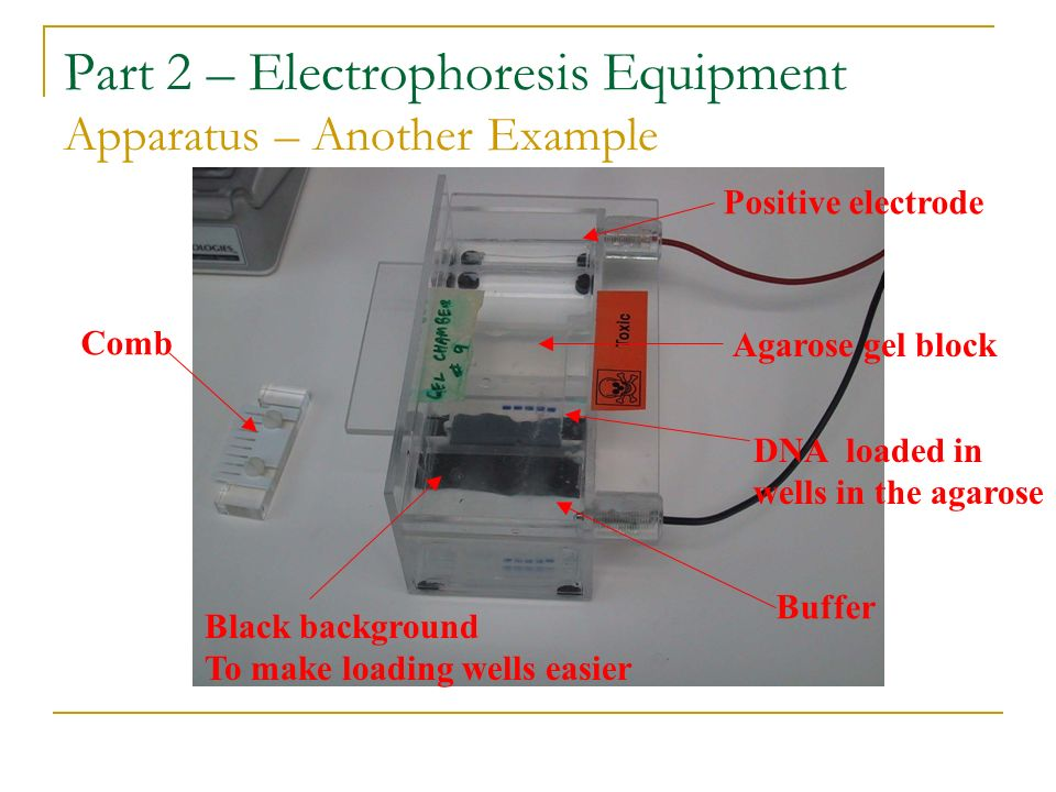 Part 2 – Electrophoresis Equipment Apparatus – Another Example