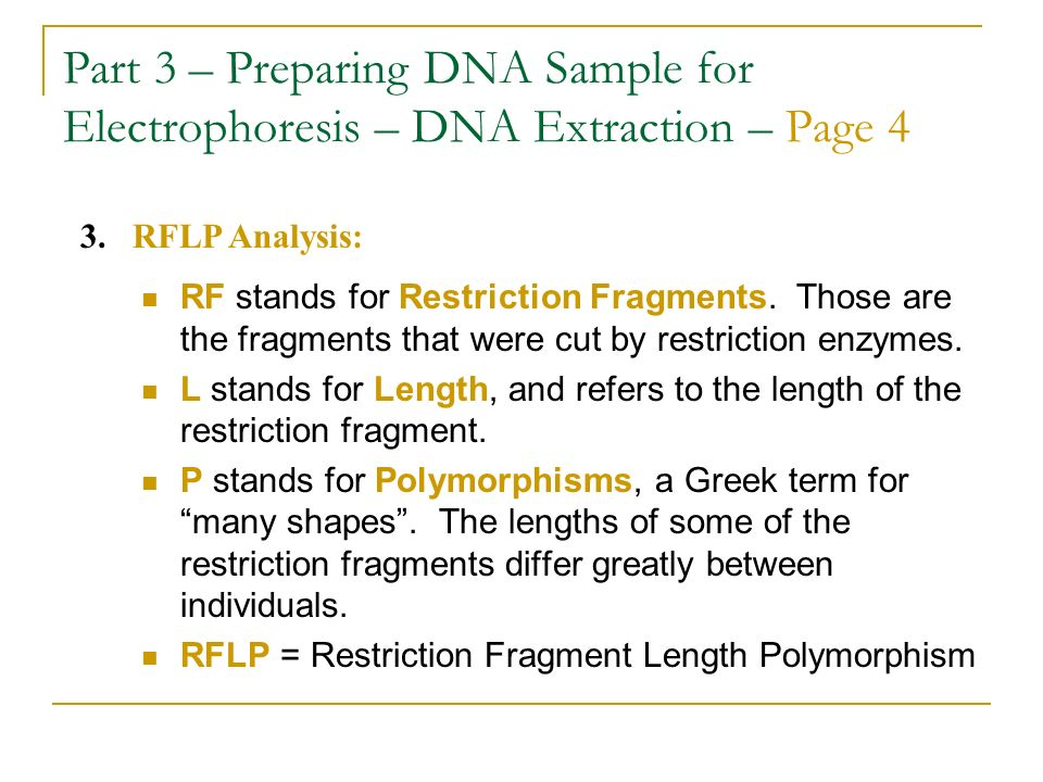 Part 3 – Preparing DNA Sample for Electrophoresis – DNA Extraction – Page 4