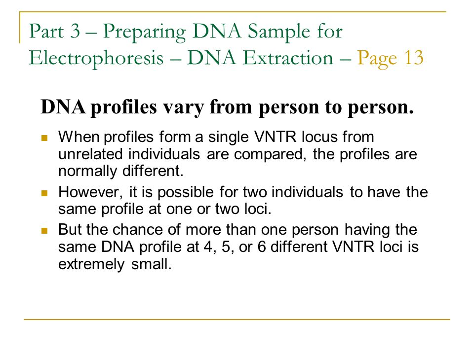 Part 3 – Preparing DNA Sample for Electrophoresis – DNA Extraction – Page 13