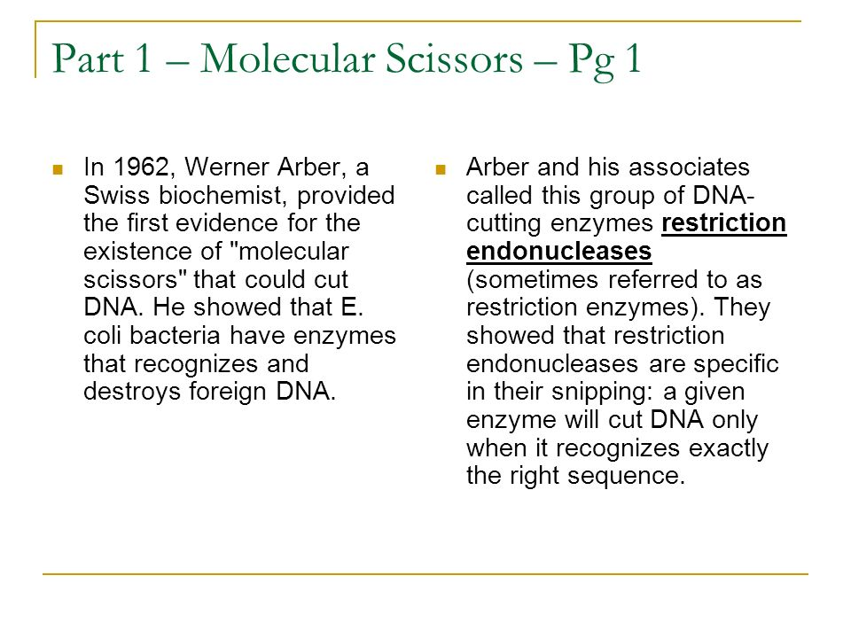 Part 1 – Molecular Scissors – Pg 1