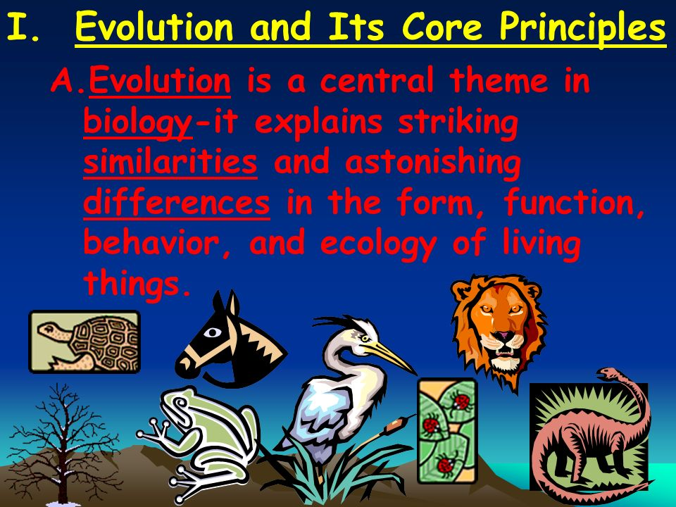 I. Evolution and Its Core Principles