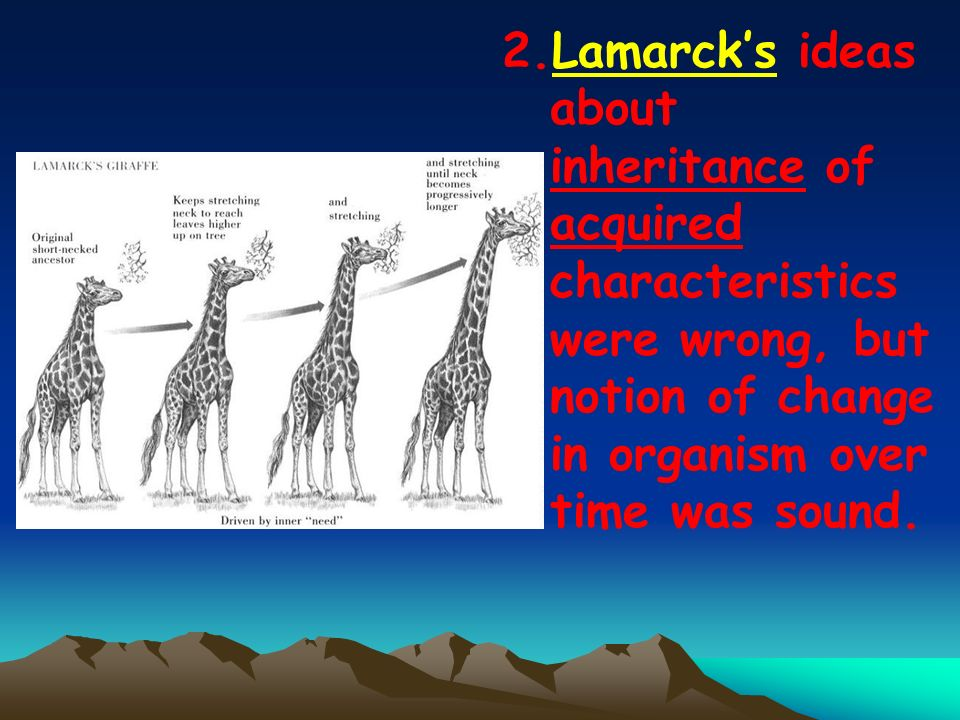 2.Lamarck's ideas about inheritance of acquired characteristics were wrong, but notion of change in organism over time was sound.