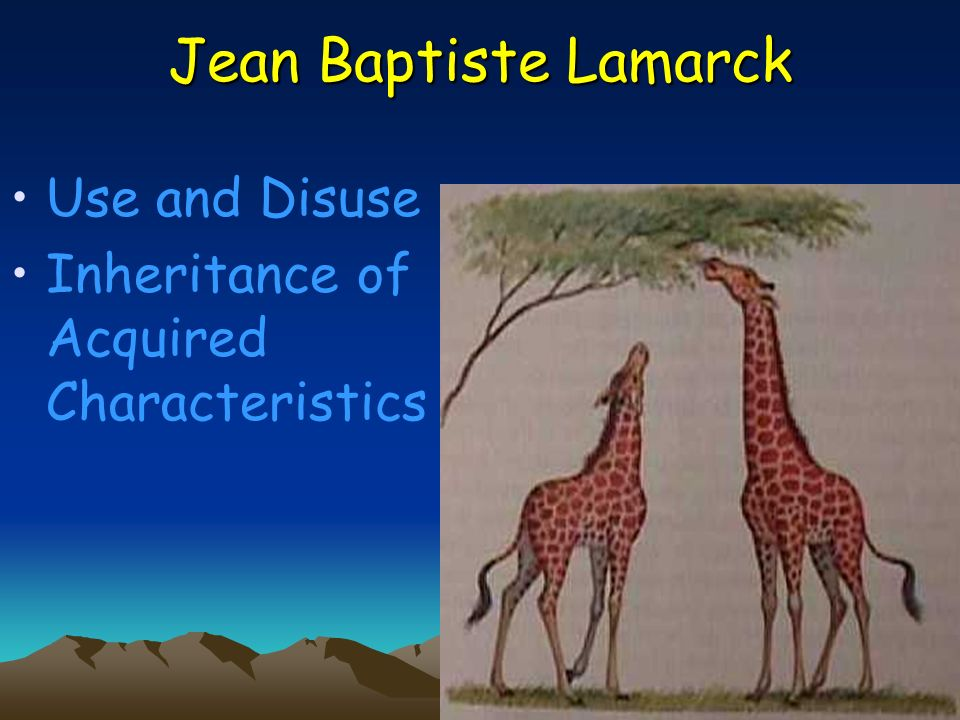 Jean Baptiste Lamarck Use and Disuse
