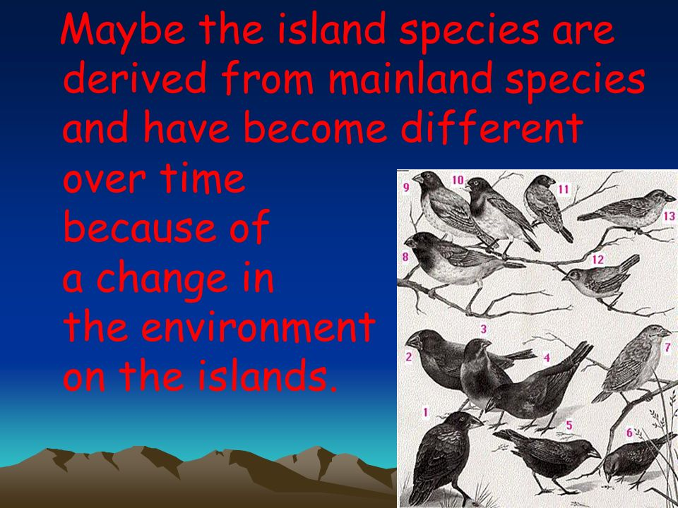 Maybe the island species are derived from mainland species and have become different over time because of a change in the environment on the islands.