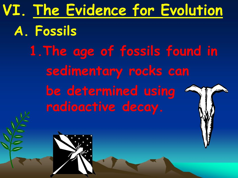 VI. The Evidence for Evolution