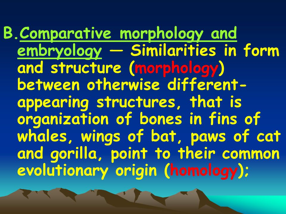 B.Comparative morphology and embryology — Similarities in form and structure (morphology) between otherwise different- appearing structures, that is organization of bones in fins of whales, wings of bat, paws of cat and gorilla, point to their common evolutionary origin (homology);