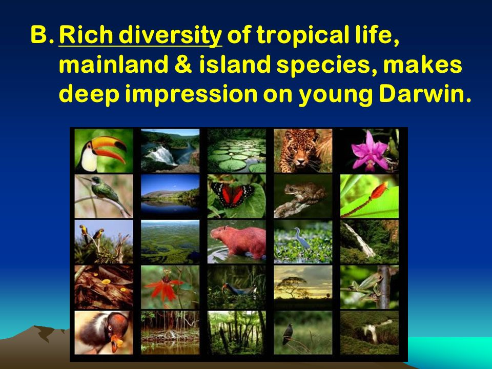 Rich diversity of tropical life, mainland & island species, makes deep impression on young Darwin.