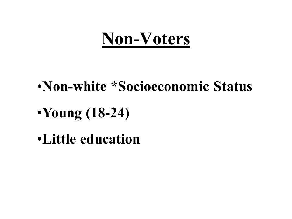Non-Voters Non-white *Socioeconomic Status Young (18-24)