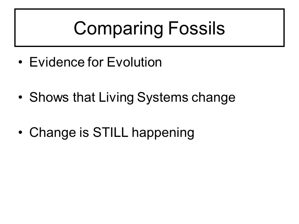 Comparing Fossils Evidence for Evolution