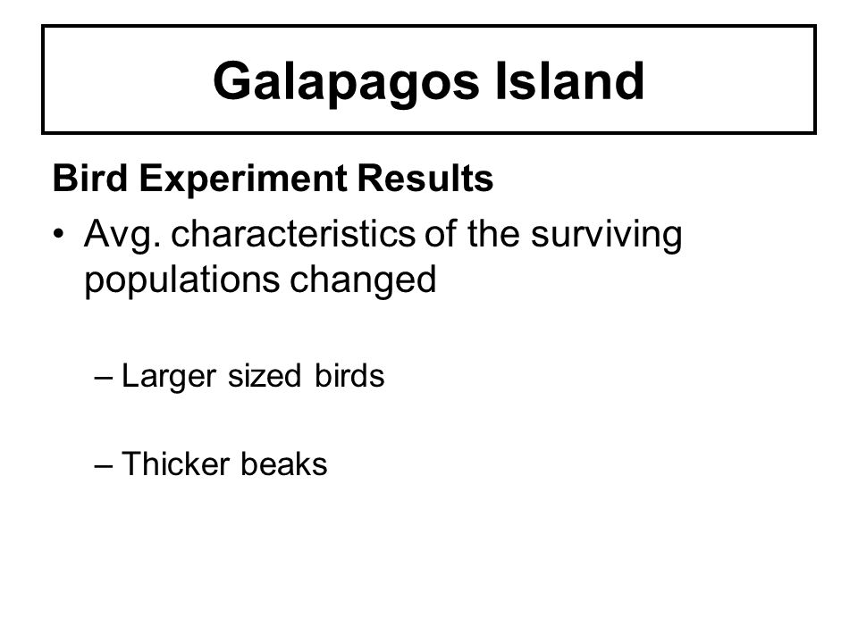 Galapagos Island Bird Experiment Results