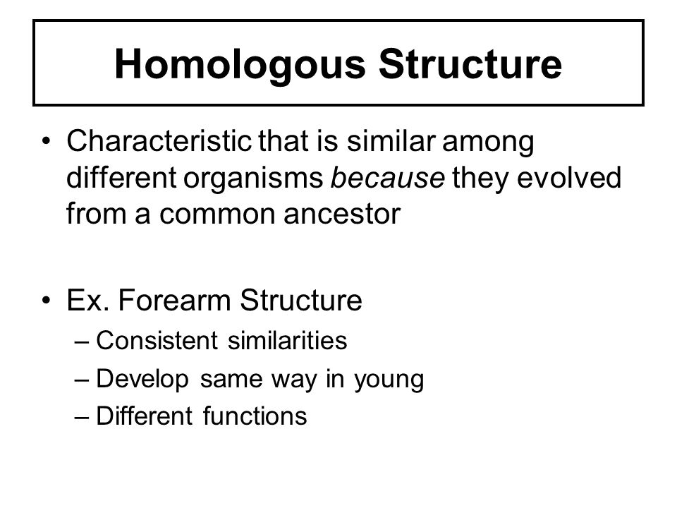 Homologous Structure Characteristic that is similar among different organisms because they evolved from a common ancestor.
