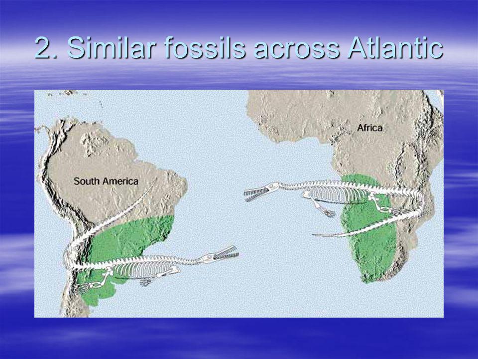 2. Similar fossils across Atlantic
