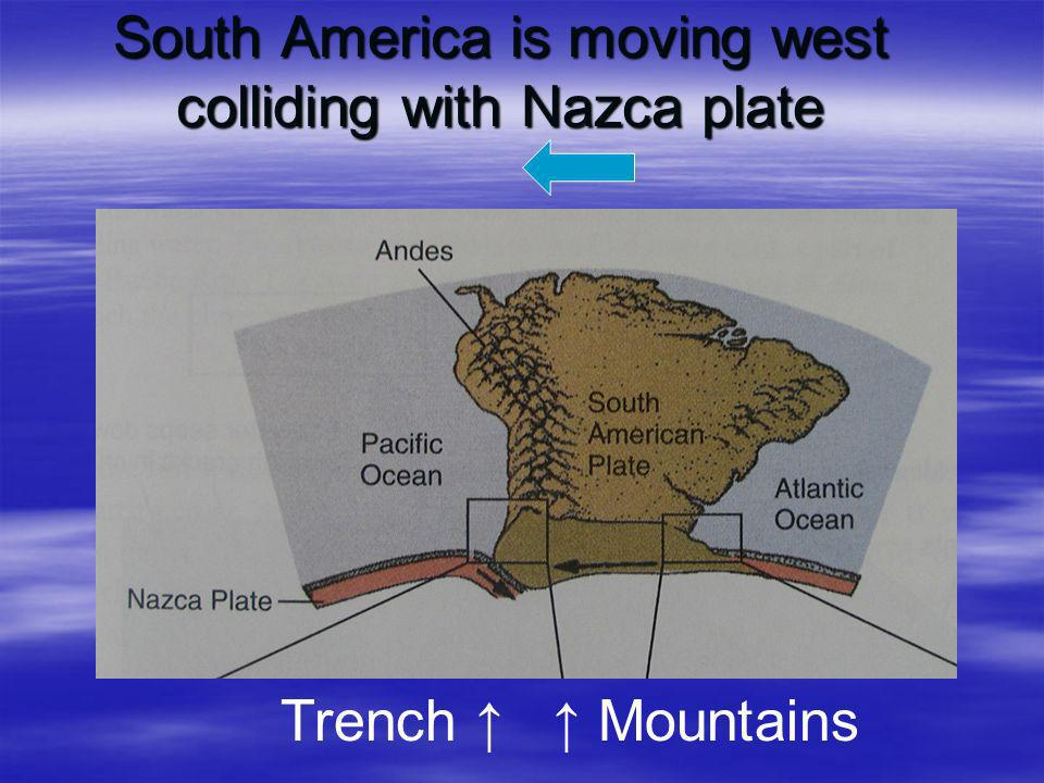 South America is moving west colliding with Nazca plate