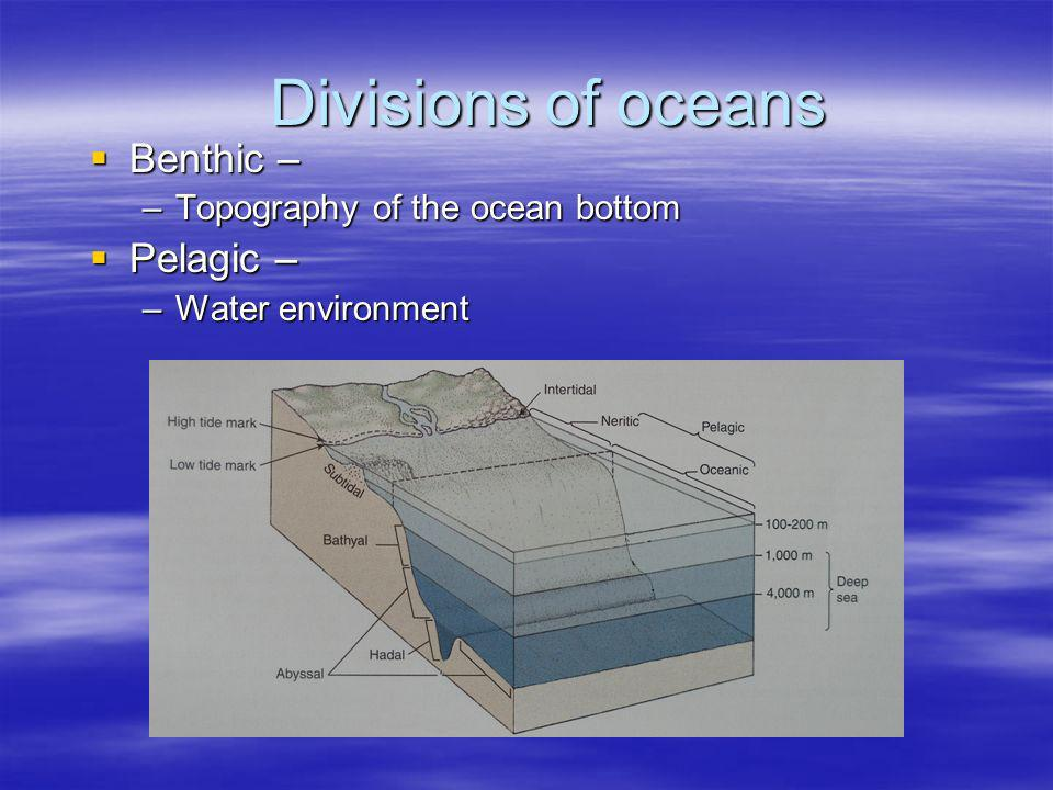 Divisions of oceans Benthic – Pelagic – Topography of the ocean bottom