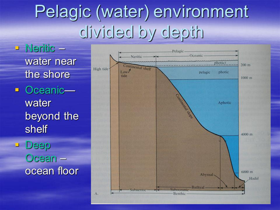 Pelagic (water) environment divided by depth