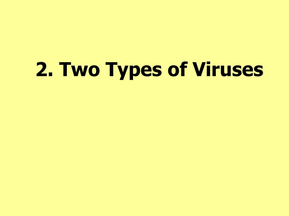 2. Two Types of Viruses 2. Two Types Virulent Temperate