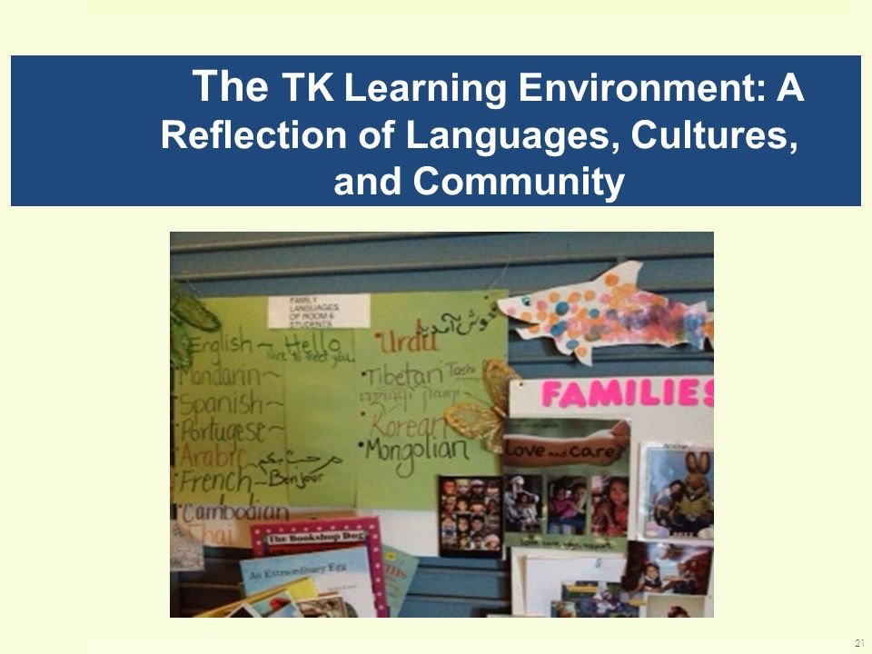 The TK Learning Environment: A Reflection of Languages, Cultures, and Community