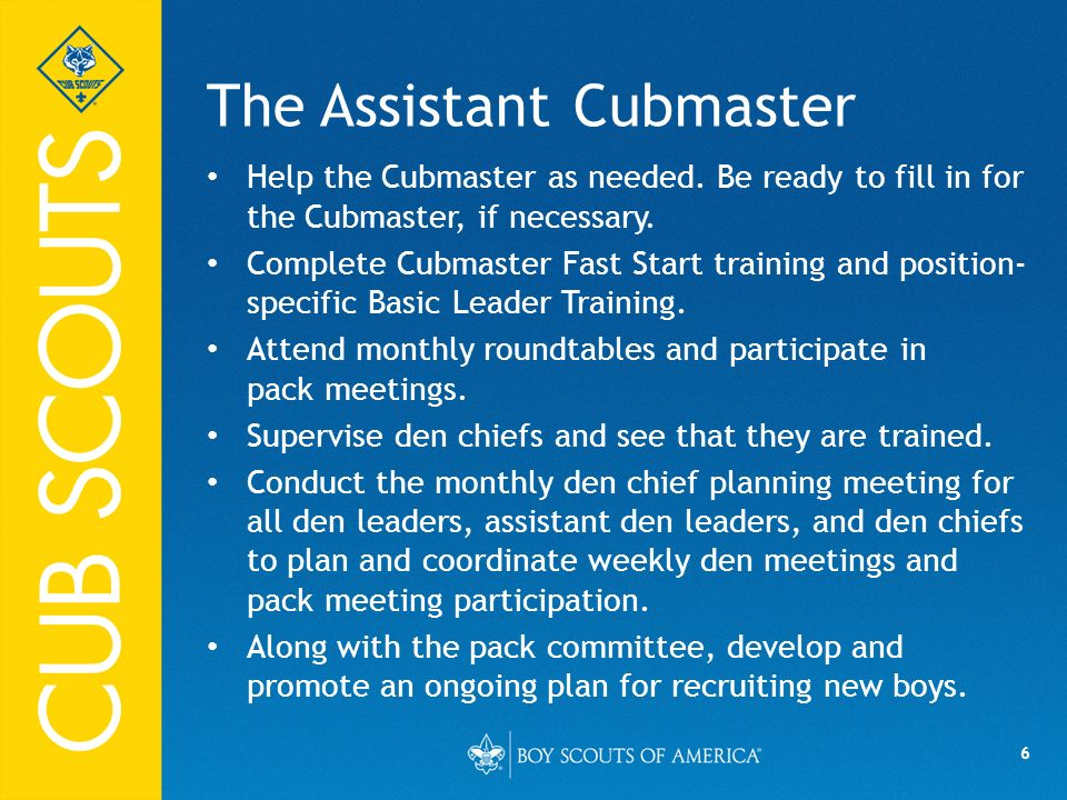 The Assistant Cubmaster