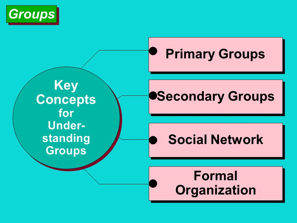Groups Primary Groups Key Concepts Secondary Groups Social Network