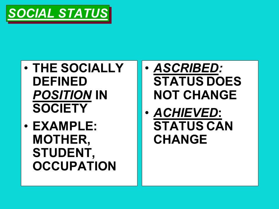 SOCIAL STATUS THE SOCIALLY DEFINED POSITION IN SOCIETY. EXAMPLE: MOTHER, STUDENT, OCCUPATION. ASCRIBED: STATUS DOES NOT CHANGE.