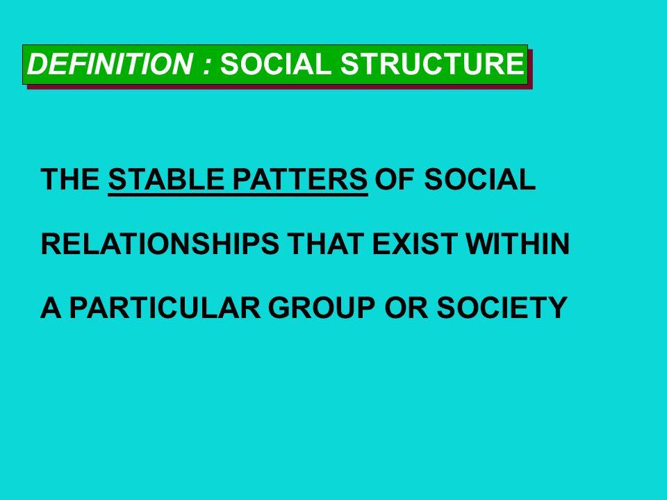 DEFINITION : SOCIAL STRUCTURE