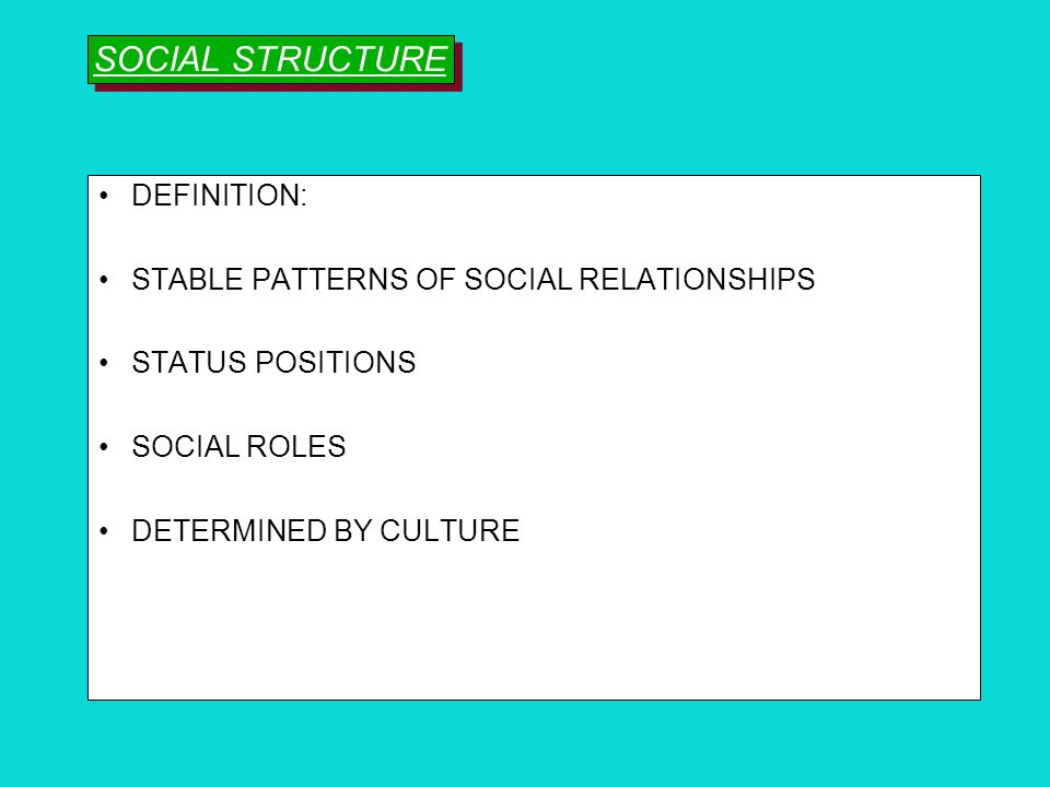 SOCIAL STRUCTURE DEFINITION: STABLE PATTERNS OF SOCIAL RELATIONSHIPS
