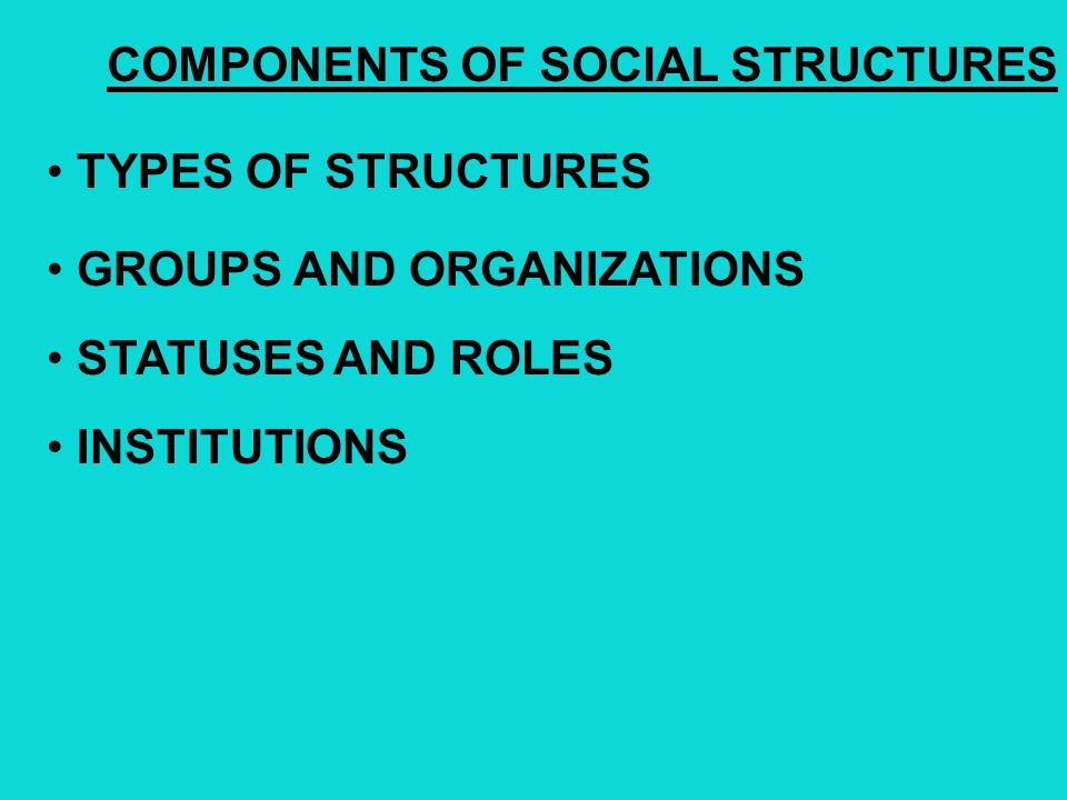 COMPONENTS OF SOCIAL STRUCTURES