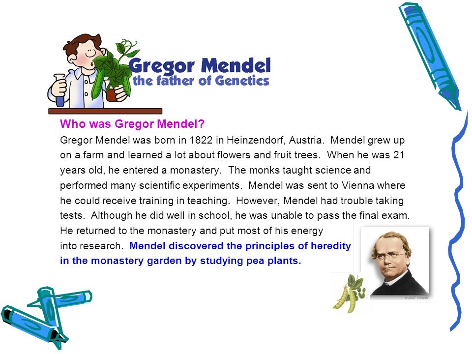 Who was Gregor Mendel Gregor Mendel was born in 1822 in Heinzendorf, Austria. Mendel grew up.