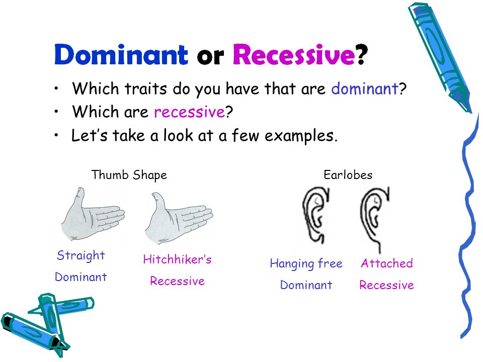 Which traits do you have that are dominant Which are recessive